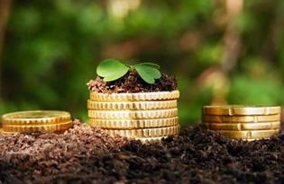 Льготное кредитование на развитие сельского хозяйства в 2020 году