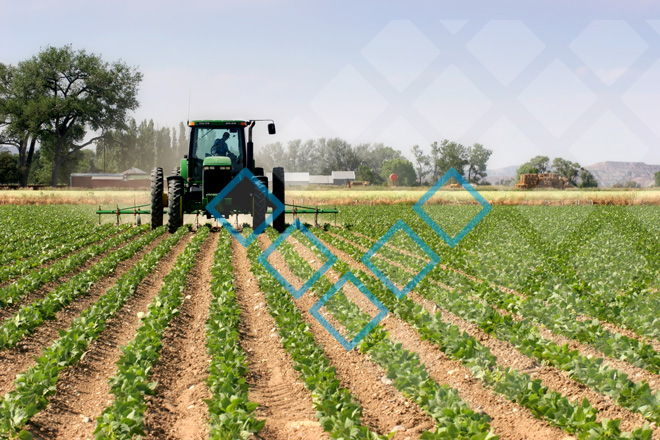 Льготное кредитование сельского хозяйства в 2019 году