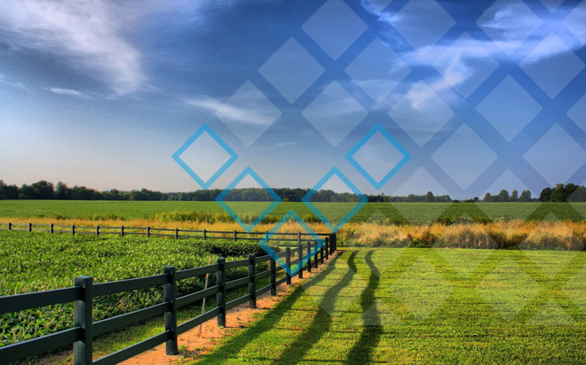 Возможно ли оформление кредитов наличными под залог земельного участка