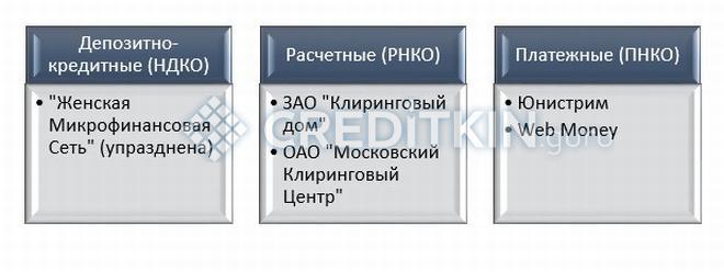 Небанковская кредитная организация