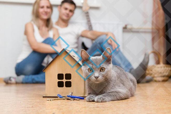 Изображение - Порядок оформления ипотеки в мтс банке - преимущества и недостатки Bez-imeni-1-12